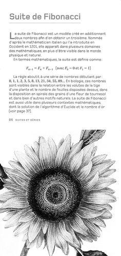 Suite de fibonacci en qu te de la parfaite harmonie - Combien coute une maison prefabriquee ...