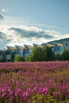 passive houses - storelva - steinsvik - 2008