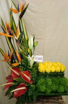 Productos – Floristeria la Maria Flower Arrangement, Floral Arrangements, Arte Floral, Funeral, Plants, Deer Antlers, Floral Design, Valentines, February