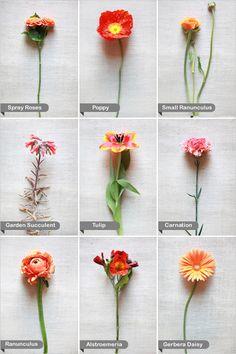 Flower Chart Wedding Guide Orange Flowers Ideas