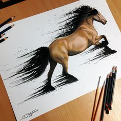 Horse Color Pencil Drawing by AtomiccircuS on DeviantArt