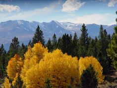 Reasons to visit Leadville/Twin Lakes in the fall Twin Lakes Colorado, Trail, How To Memorize Things, Bucket, Tours, Vacation, Explore, Vacations, Holidays Music