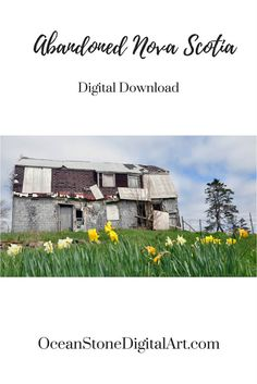 Abandoned Barn Digital Download, Printable Art, Nova Scotia, Custom Home Decor, Wall Art, Old Barn Picture, Rustic Barn Decor, Flower Photo by OceanStoneDigitalArt on Etsy