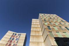 MDH Arkitekter, Ivan Brodey · Moholt Timber Towers