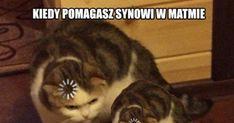 Polish Memes, Funny Mems, Mish Mash, Cthulhu, Maine, Haha, Jokes, Humor, Funny Memes