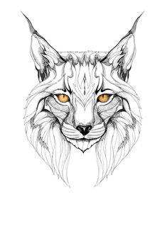 lynx graphic art