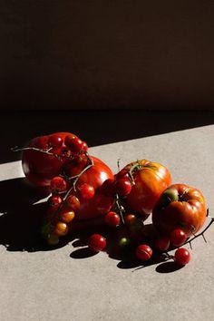 tomatesweb.jpg