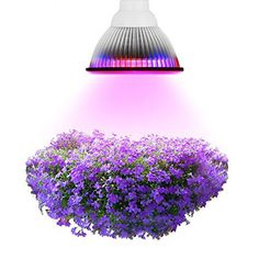 E27 12W / 24W / 36W LED Grow Lights Red&Blue 1200LM Plant Lamps Aluminum Growing Bulbs Garden Greenhouse Lighting P20 #Affiliate
