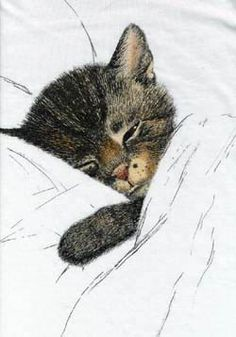 """Chessie Cat - by Austrian artist Guido Gruenwold. Later picked up as advertising for the Chesapeake & Ohio RR -- ergo the name """"Chessie"""" (Sleep Like a Kitten)."""