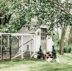 Backyard trees - I've had a long disconnected weekend spent at home soaking up every last bit – Backyard trees Cute Chicken Coops, Chicken Coup, Chicken Coop Designs, Chicken Runs, Backyard Trees, Backyard Farming, Chickens Backyard, Backyard Cottage, Diy Jardin