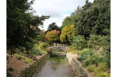 No water flowing in the winterbourne at West Dean in October Water Flow, Spring Garden, Dean, Pond, Restoration, Sidewalk, October, Autumn, Rustic