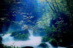 Oirasekeiryuu,Towada-Hachimantai National Park  Hokkaido,Japan   十和田八幡平 , 奥入瀬渓流 , 青森