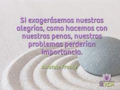 Visita nuestra página www.revistasevida.com Anatole France, Frases, Life