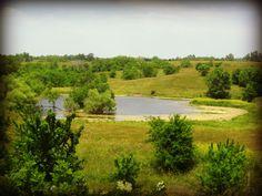 Our Mississippi farm pond