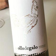 Ollodegalo Godello 2014 (Valdeorras) #vino #valdeorras #uvinum #videocata
