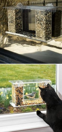 think we need this....This is a great bird feeder because it sticks to the window (so the children and cats can see the birds up close), and it has a one-way mirror so the birds don't see the cat and the kids! Holds plenty of food.
