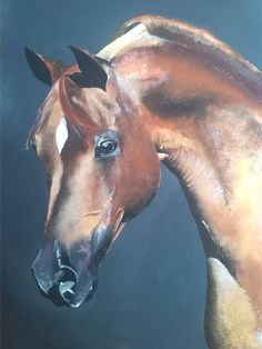 Saatchi Art Artist Cerr Rojas; Painting, I love this art piece because of the horse. I really enjoy drawing, painting, and creating artwork based on horses because they mean a lot to me, I have grown up around them. This oil painting has amazing highlights that enhances the muscles in the Arabians neck and delicate head. The empty space does not look bad because the opaque blue looks good with the chestnut hues of the horse. 1/24/17