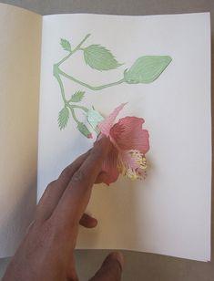 Artist Books | Radha Pandey