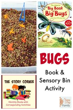 Bug sensory bin and fine motor activity based on the Big Book of Big Bugs!