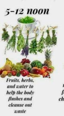 To Loose, Cleanse, Herbs, Fruit, Food, Essen, Herb, Meals, Yemek