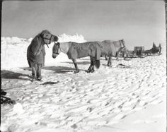 The Lost Photographs of Captain Scott: 100 Years of Polar Mystery – Brain Pickings