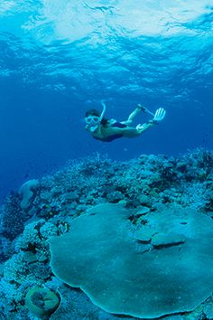 Marine Activities - Mana Island Resort & Spa