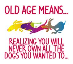 This is so true  for this crazy dog lady :)
