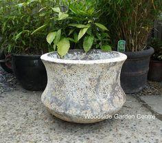 Large Atlantis Lotus Ocean Bamboo Pot   Woodside Garden Centre   Pots to Inspire Woodside Garden Centre, Olive Tree, Atlantis, Garden Pots, Lotus, Planter Pots, Bamboo, Ocean, Inspire