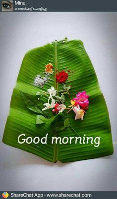 Good Morning Msg, Good Morning Saturday, Good Morning Coffee, Good Morning Messages, Gd Morning, Good Morning Beautiful Pictures, Good Morning Picture, Good Morning Flowers, Morning Pictures