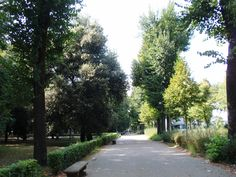 Cascine, Firenze