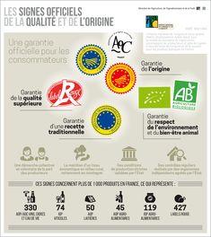 Les infographies