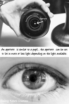 Aperture explained.  Good now I have something to show people when trying to explain aperture.
