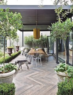 Backyard Porch Ideas On A Budget Patio Makeover Outdoor Spaces > Backyard Garden Design, Backyard Patio, Backyard Landscaping, Balcony Garden, Desert Backyard, Wood Patio, Indoor Garden, Landscaping Ideas, Outdoor Rooms