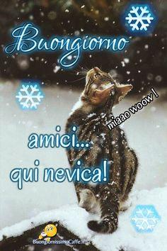 Buongiorno nevica 2 Cossette, Italian Memes, Good Morning Good Night, Happy Day, Smiley, Cartoon, Snow, Winter Time, Photos