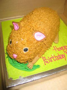 Hamster lovers birthday cake