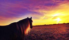 My love & the sunrise
