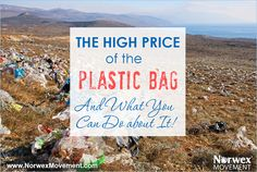 The High Price of the Plastic Bag—And What You Can Do about It! - Norwex Movement