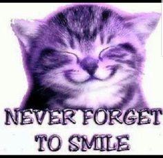Smile in Purple 😀 Purple Cat, Purple Love, All Things Purple, Shades Of Purple, Deep Purple, Purple Stuff, Purple Pages, Purple Animals, Cat Art