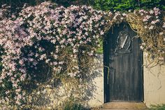 Door in Glendalough, Ireland by earnestine Places Around The World, Around The Worlds, Gardening Photography, Irish Eyes Are Smiling, England And Scotland, Garden Gates, Ireland Travel, Clematis, Places To Go