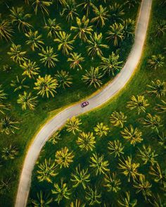 """Reuben Nutt is a talented 18-year-old self-taught photographer and cinematographer based in Brisbane, Australia. """"I focus on lifestyle and landscape photography and telling visual stories,"""" he says… - Get your first quadcopter yet? If not, TOP Rated Quadcopters has great Beginner Drones, Racing Drones and Aerial Drones that fit any budget. Visit Us Today! >>> http://topratedquadcopters.com/go-check-out/pin-trq <<< :) #quadcopters #drones #dronesforsale #fpv #selfiedrones #aerialphotography…"""