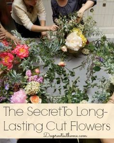Flowers On Your Table~The Secret To Long-Lasting Cut Flowers