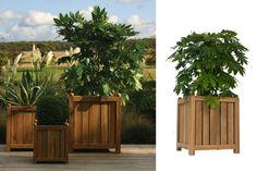 Citroen 75cm Teak Planter | pr home