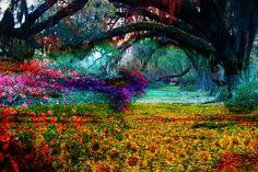 art impressionism   Impressionism Willow Garden   Digital Artist, New Media