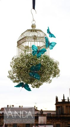 Gypsophila sitting in a birdcage decorated with floating cerulean butterflies.