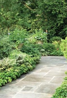 york stone path More - Garden and Home Front Garden Path, Front Path, Front Gardens, Outdoor Gardens, Front Garden Entrance, Porch Entrance, Backyard Patio, Backyard Landscaping, Landscape Design