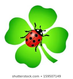 Adult Crafts, Diy And Crafts, Ladybug Quotes, Lady Bug Tattoo, Ladybug Art, Clay Flower Pots, Clover Green, Holiday Pictures, Ladybugs