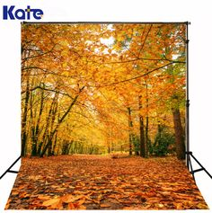 Kate Digital Printing Natural Scenery Photography Backdrop Autumn Defoliation For Outdoor Wedding Photography Background J01725