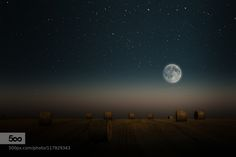 Corn Moon by mt-sign #nature