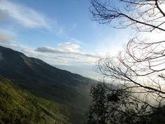 """taken from """"Bukit Si Kunir"""" Jawa Tengah"""