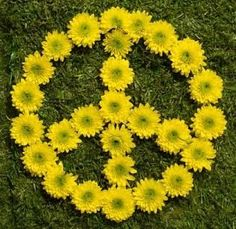 Yellow Flower Peace Sign
